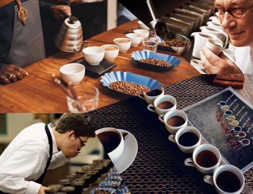 картинка - Q-грейдеры: Сомелье кофейного мира